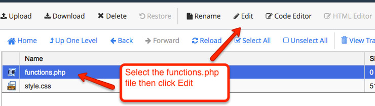 Edit the WordPress functions file